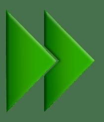 logo 5th vision